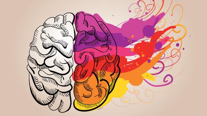Beynimizin %10'nunu mu kullanıyoruz ?   Rehberlik Servisi